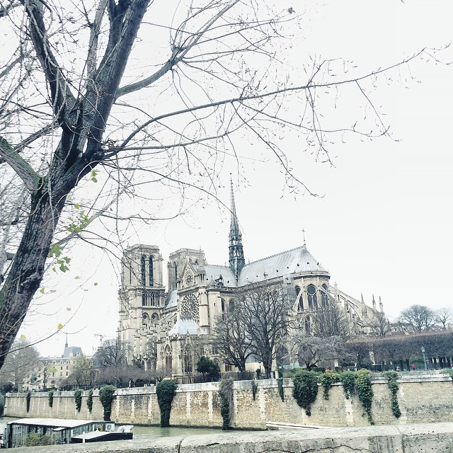 Winter is coming in Paris ❄️#winter #paris